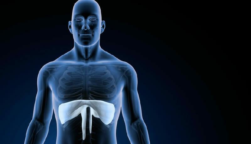 Entrenamiento de los músculos inspiratorios en Ventilación Mecánica