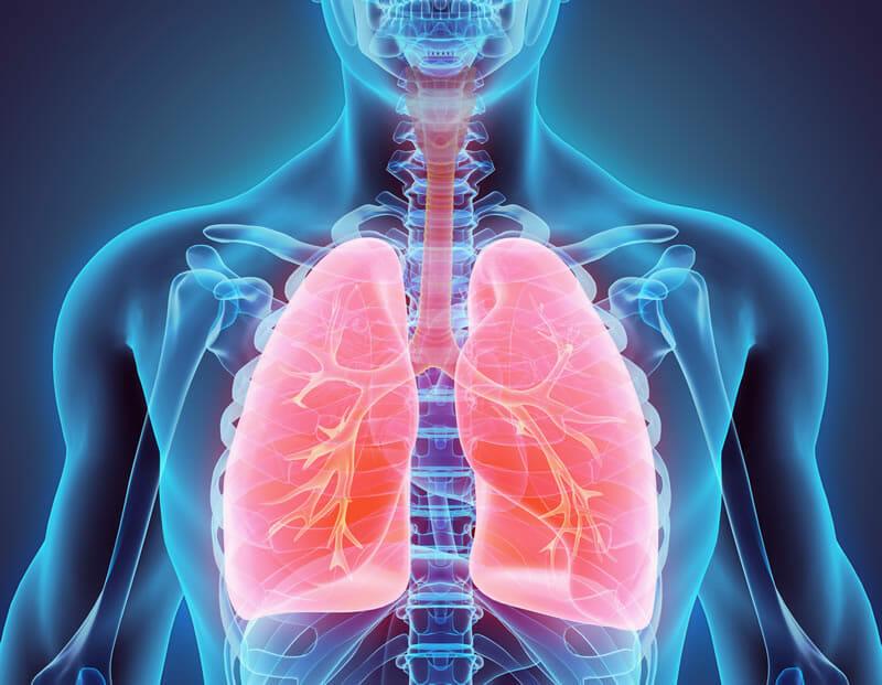 Prevalencia y factores de riesgo de la reinstitución de la ventilación mecánica en pacientes desvinculados de la ventilación mecánica prolongada